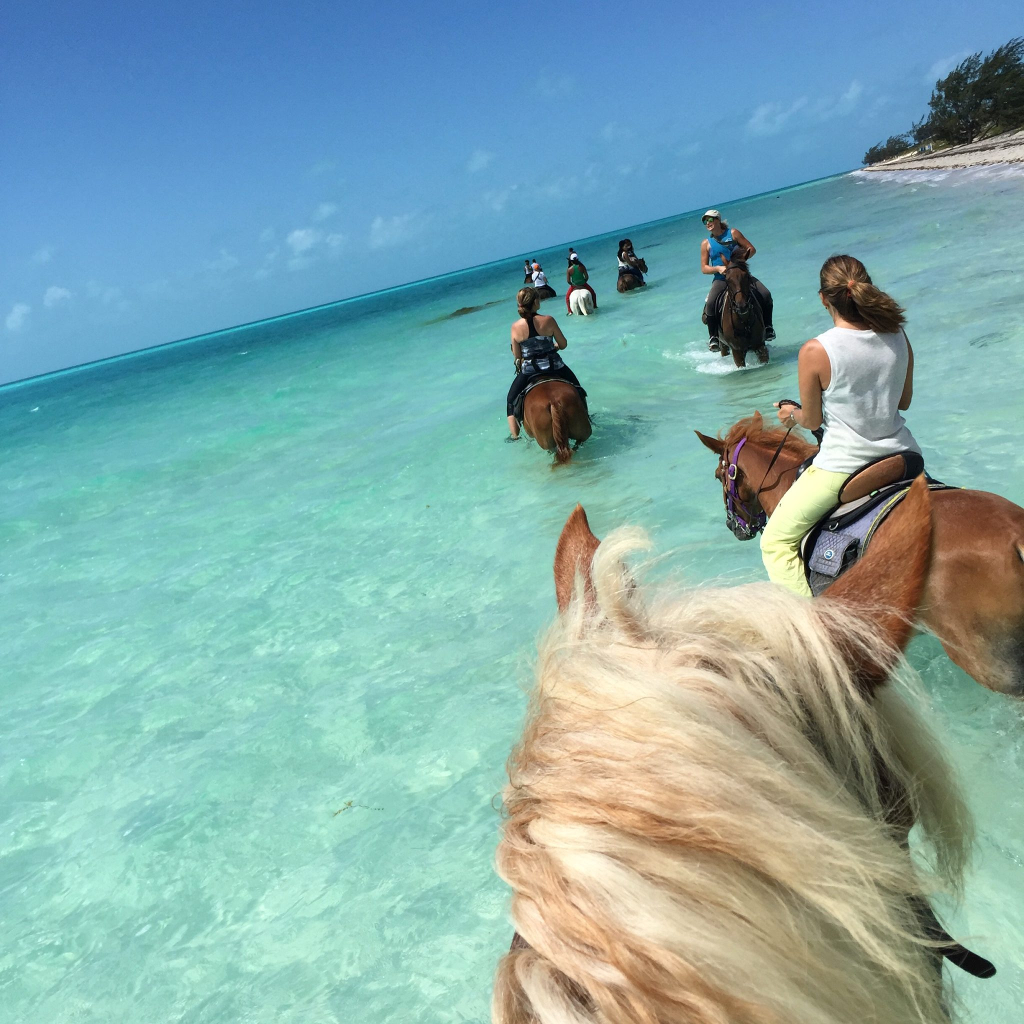 Enjoy the best of turks caicos with 6 fun family activities for Best places for a vacation
