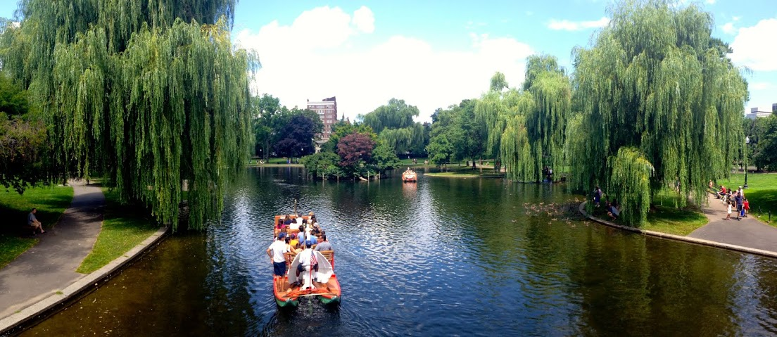 Check out the swan boats on your Boston vacation