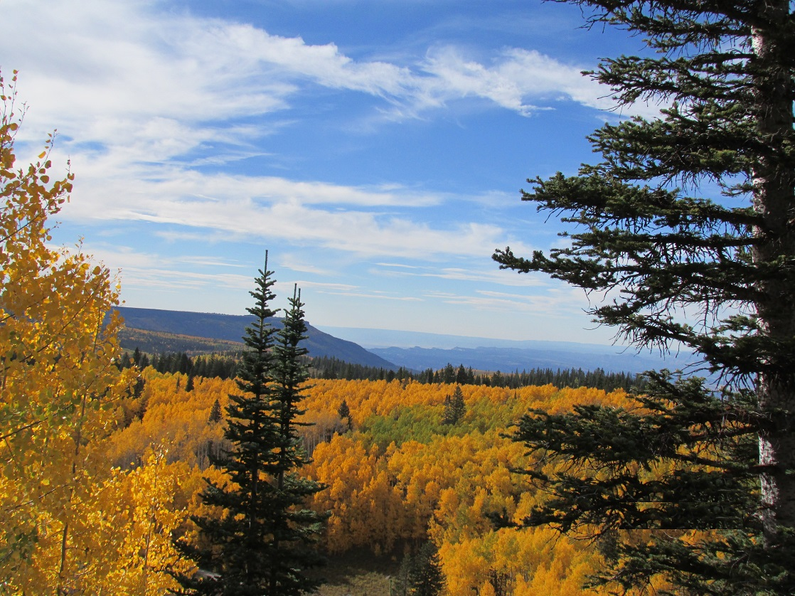 Breathtaking Fall Splendor of Colorado's Grand Mesa