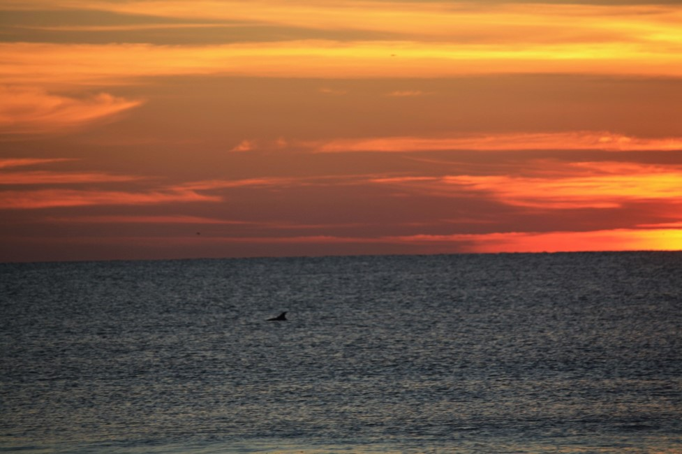 Fall Fun in Virginia Beach, includes the beautiful sunsets!