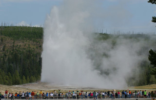The famous Old Faithful Geyser at Yellowstone National Park.