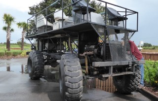 Take a swamp buggy ride on a Florida vacation.