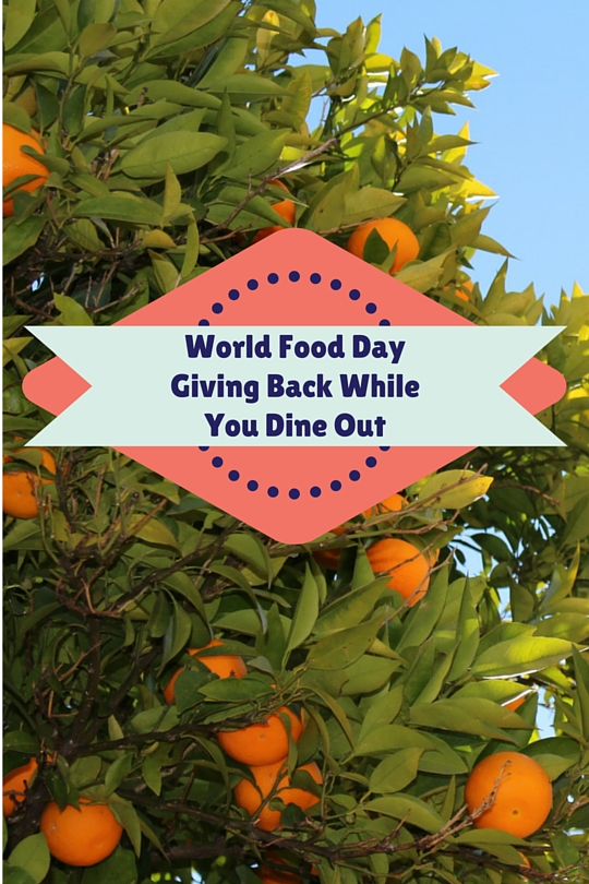 World Food Day Pin