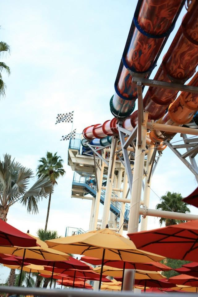 How to Plan the Best Day at Wet 'n Wild Water Park