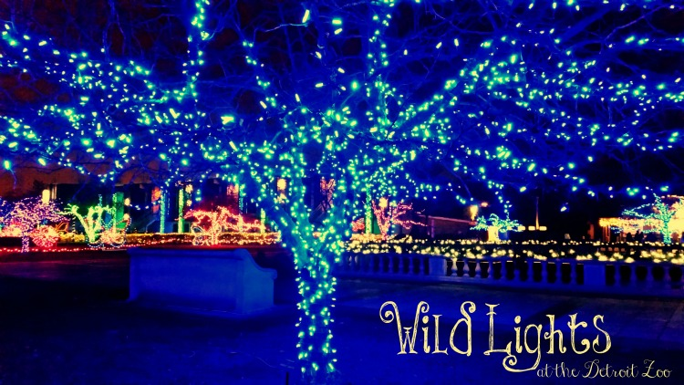 Wild Lights at the Detroit Zoo. Photo by Mary Moore / Retro TravelingMom
