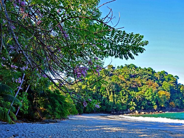 A short hike away from El Faro Beach Hotel - Manuel Antonio National Park, photo by Yvonne Jasinski Credit Card Traveling Mom