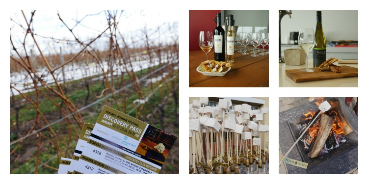 Head out to Niagara Falls to celebrate the Icewine harvest at the Niagara Icewine Festival in January.