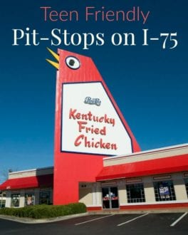 Teen Friendly Pit-Stops Along I-75 in Georgia