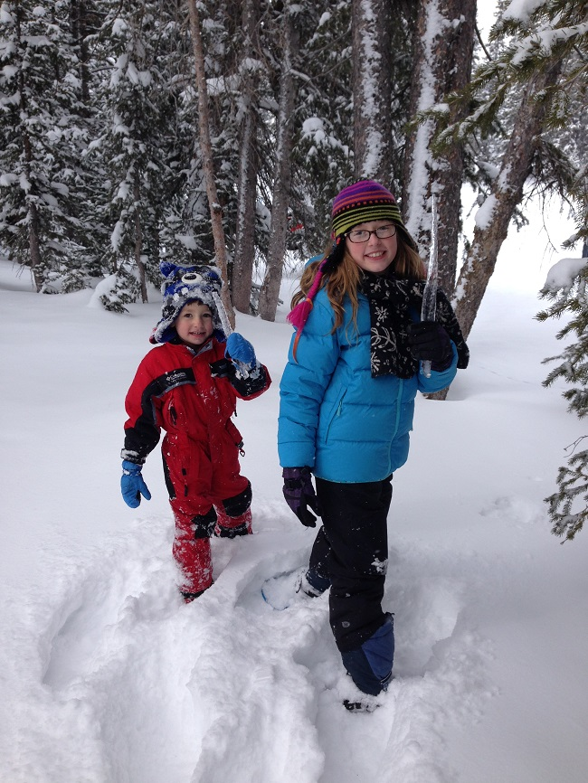 Reasons Your Family Will Love Snowshoeing Icicle hunting
