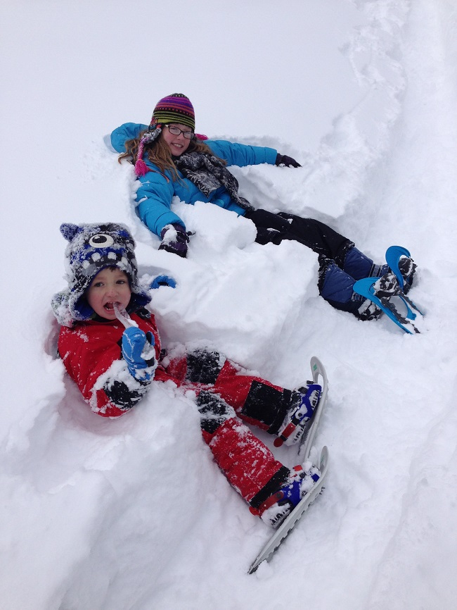 Reasons Your Family Will Love Snowshoeing Snow chairs