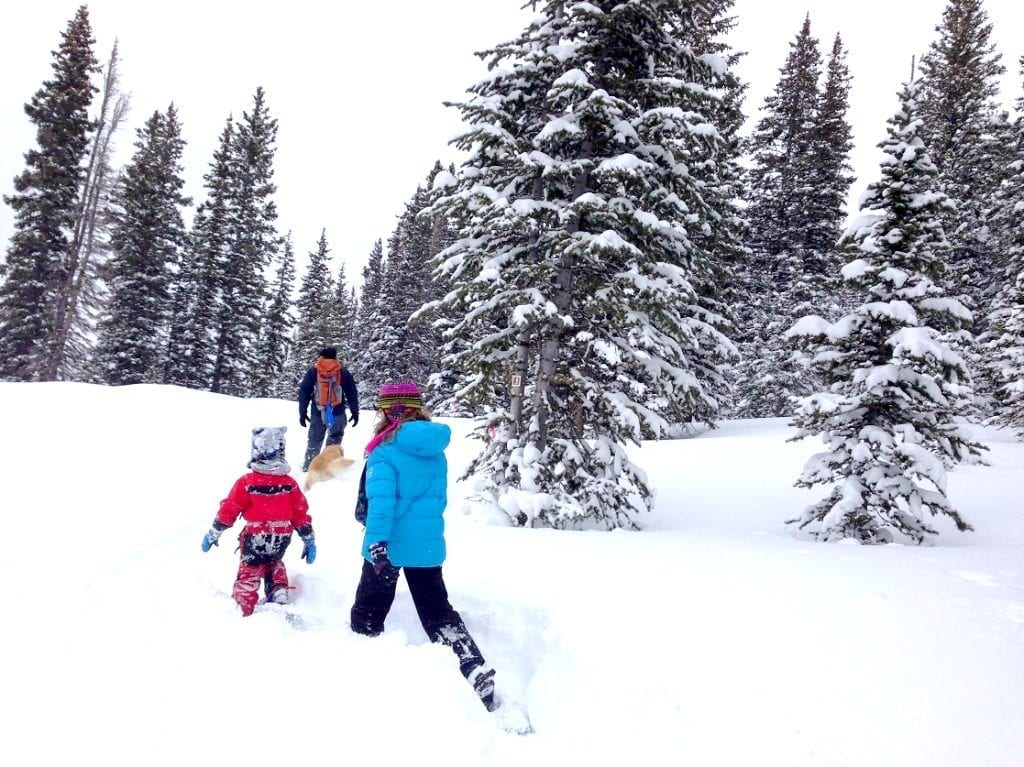 Reasons-Your-Family-Will-Love-Snowshoeing-on-a-trail-1024x767