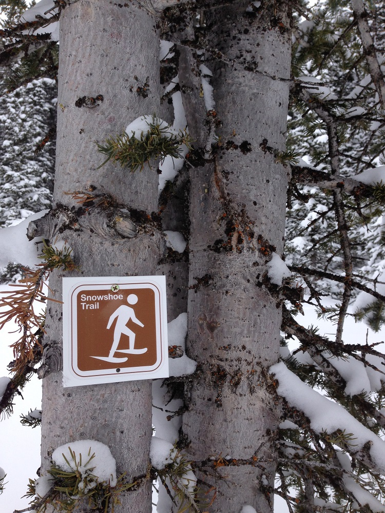 Reasons Your Family Will Love Snowshoeing trail sign