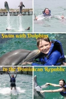 Swim with Dolphins-Dominican Republic-collage-Pinterest