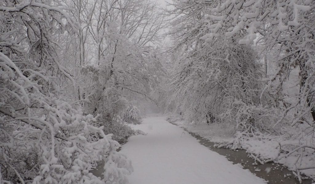 Winter Wonderland at Allaire State Park, a great destination on a winter road trip