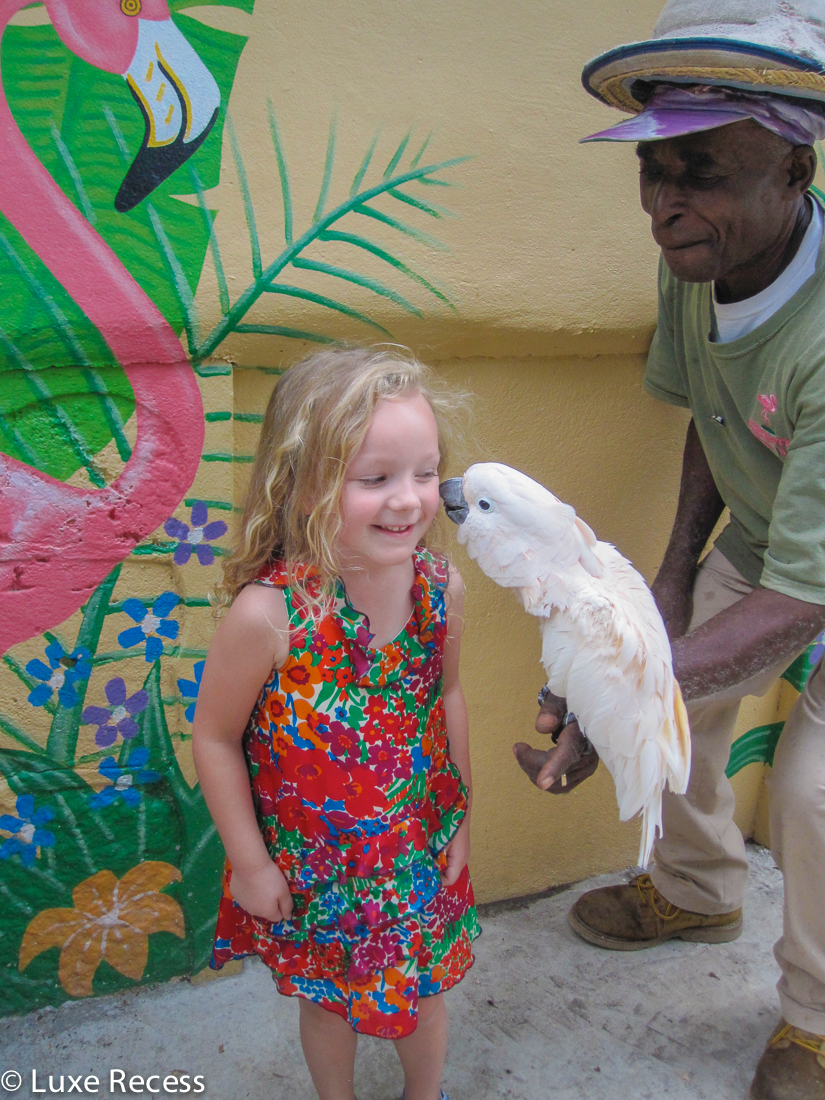 Getting a little kiss from a sweet and romantic cockatoo. Photo credit: Robin Hutson of LuxeRecess.com
