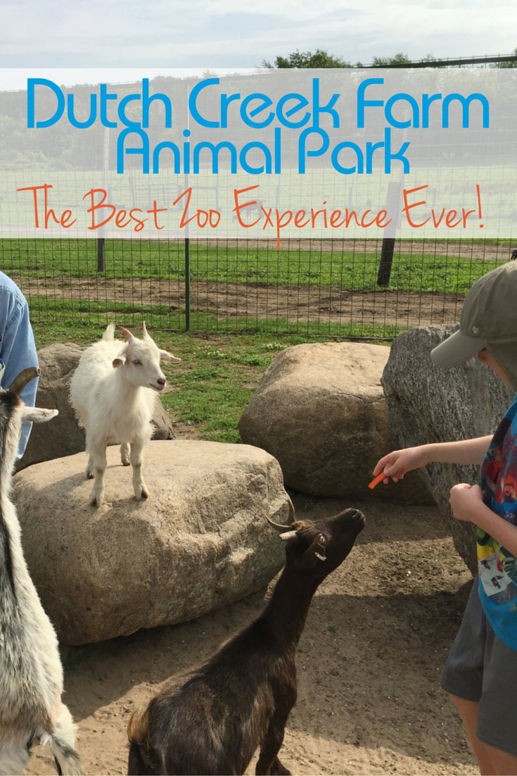 Have the best zoo experience at Dutch Creek Farm Animal Park in Shipshewanna, Indiana