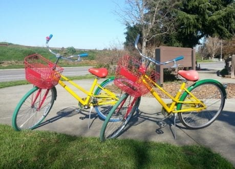Google Bikes in the park next to Google's headquarters in Silicon Valley. Photo credit: Gwen Kleist, Healthy TravelingMom.