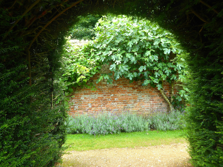 Highclere secret garden