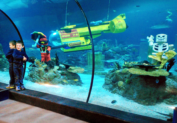 SeaLife Aquarium is just 1 of 8 Reasons Why You Should Take on LEGOLAND with a Preschooler