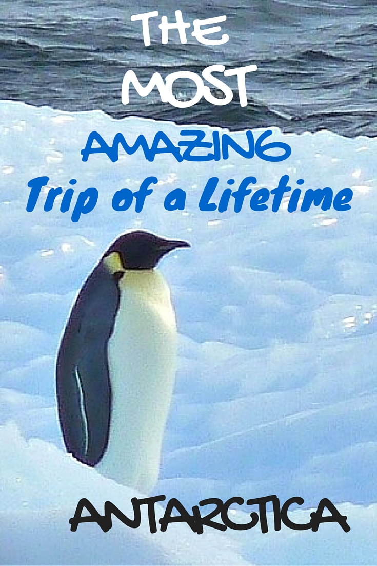 Take a a trip of a lifetime to Antarctica!