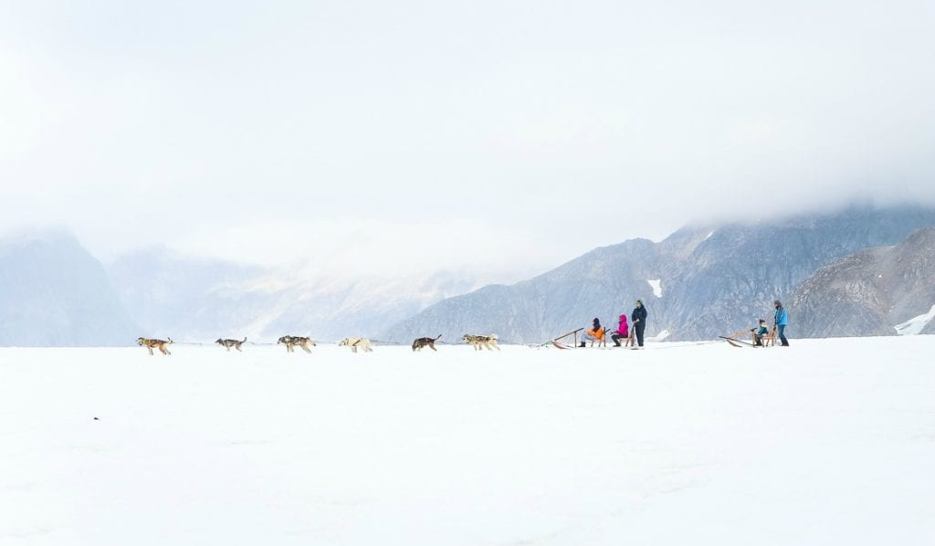 An Alaskan dog sledding adventure. Photo by Britni Vigil