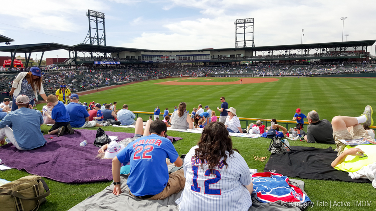 1 of 7 fun things to do in Phoenix, Arizona is to catch a cubs game at cactus league spring training.