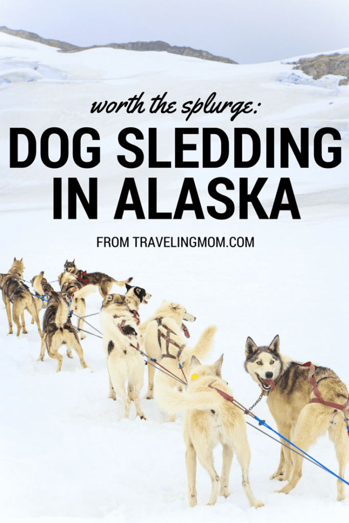 Is an Alaskan Dog Sledding Tour Worth the Splurge? Photo by Britni Vigil