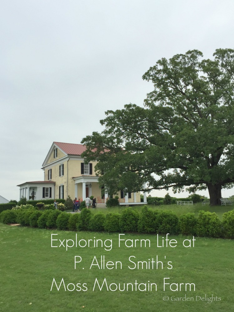 Channel your inner Laura Ingalls at P. Allen Smith's Moss Mountain Farm. Photo by Julie Thompson Adolf