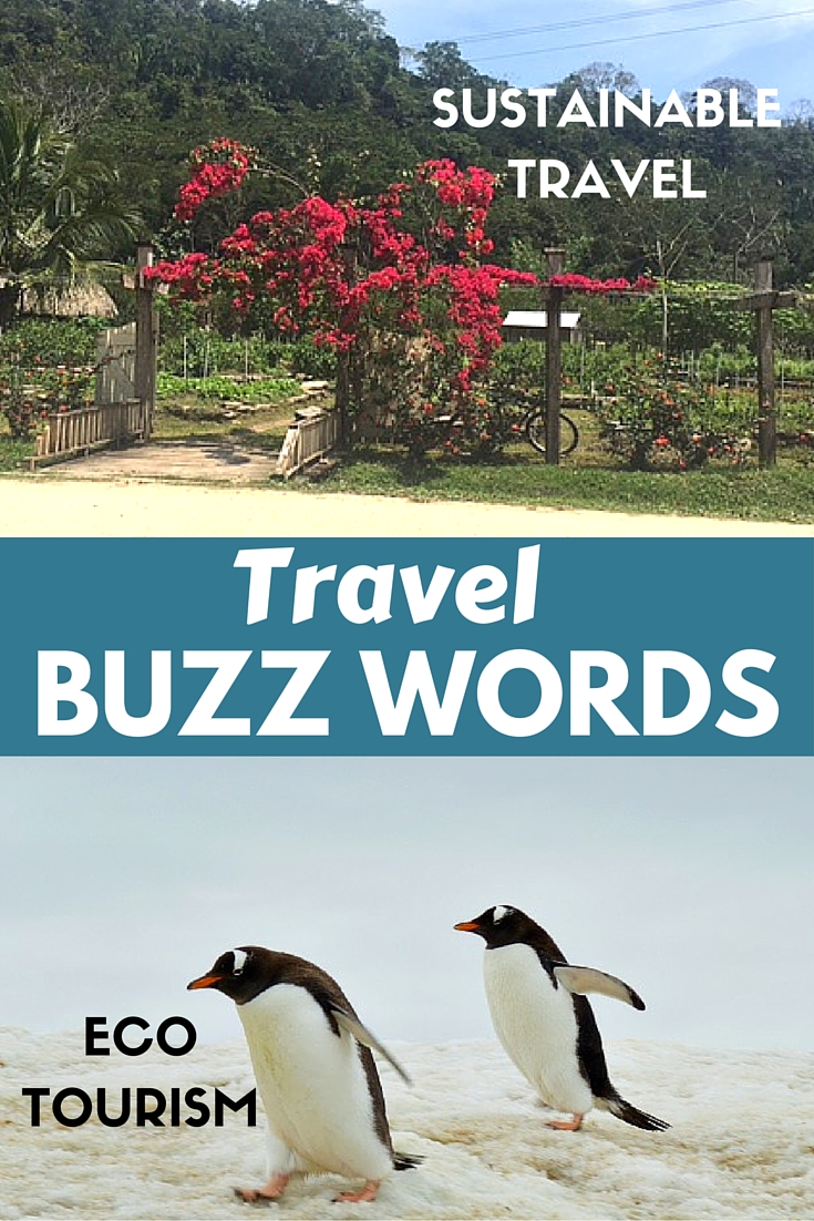 what are the current travel buzz words?