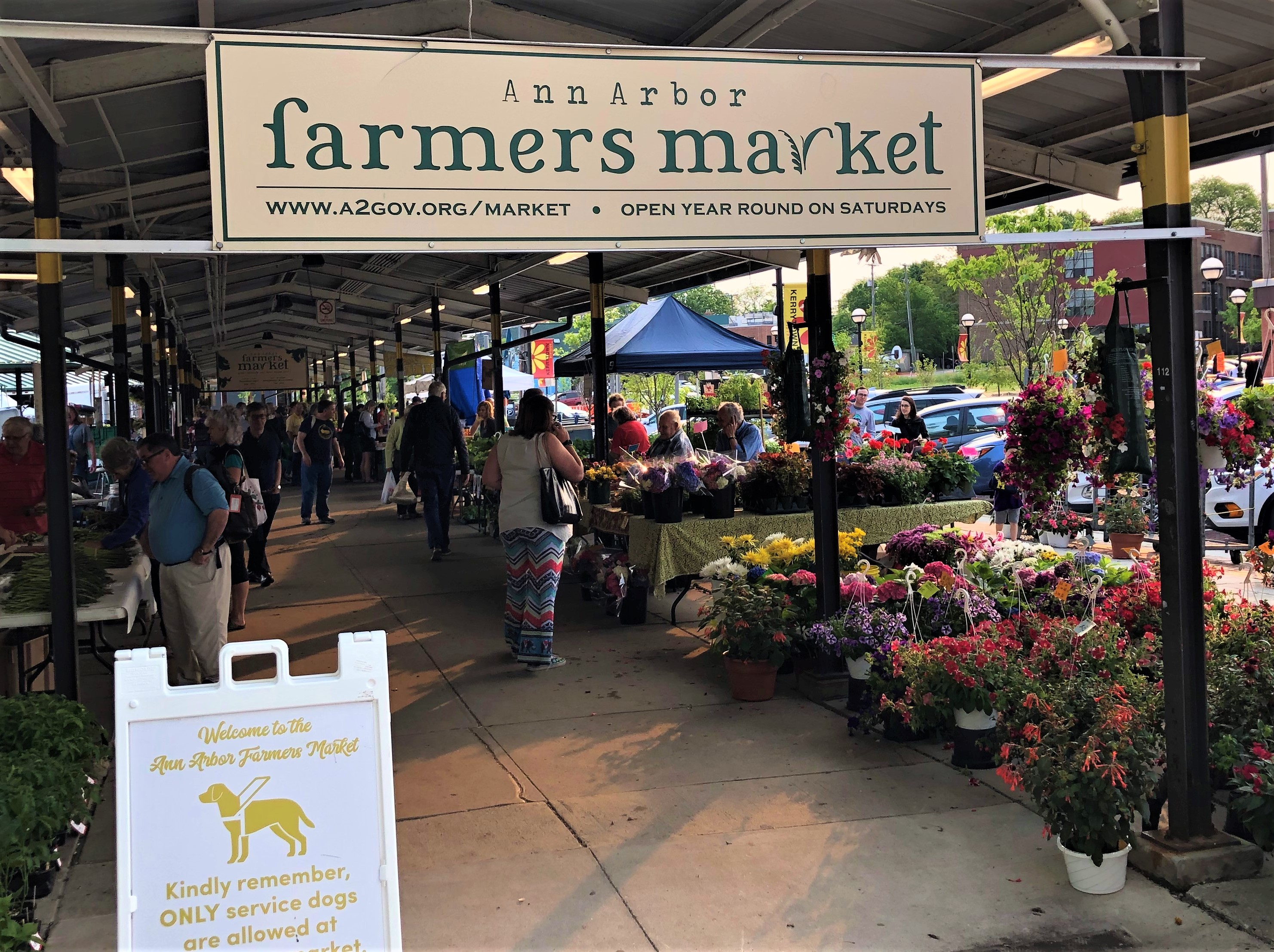 The Farmer's Market is one of many free things to do in Ann Arbor Michigan.