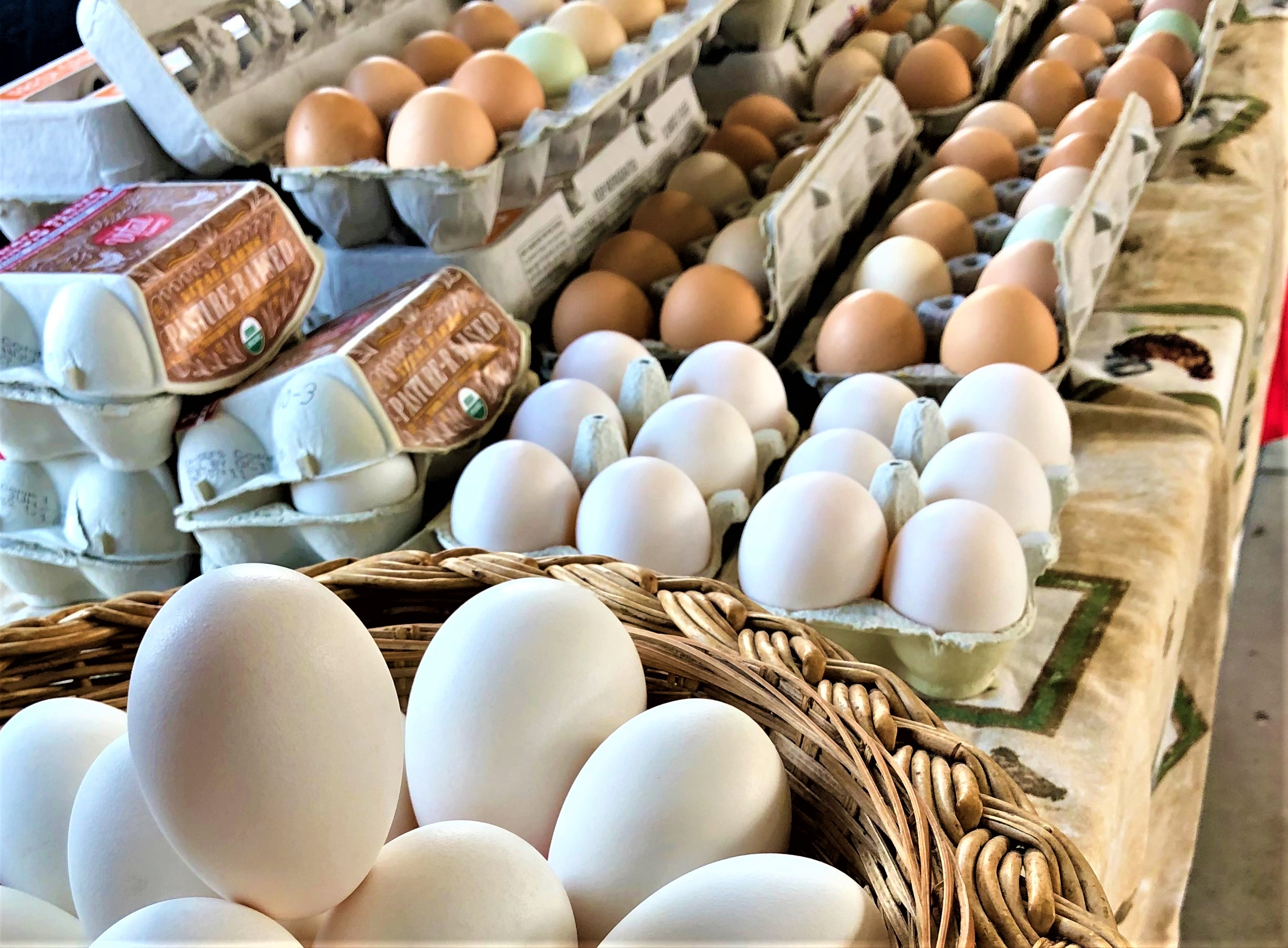 Fresh eggs at the Ann Arbor Farmer's Market, one of many free things to do in Ann Arbor MI
