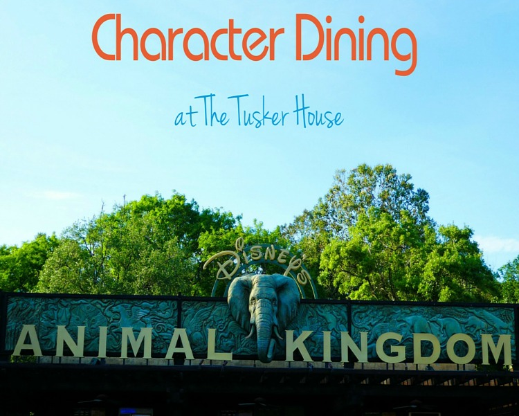 Animal Kingdom Tusker House