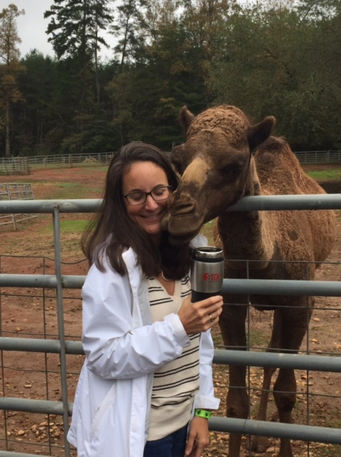Have coffee with camels at the North Georgia Zoo, one of the highly unusual places to stay the night in America.