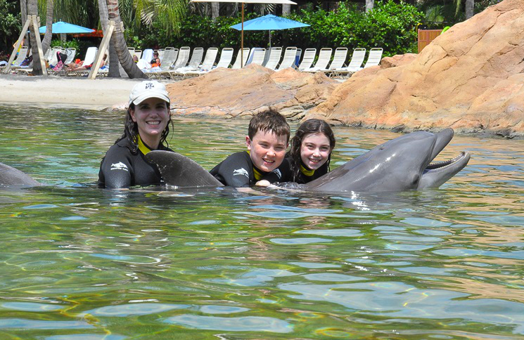 Try a dolphin encounter at the all inclusive Discovery Cove Orlando