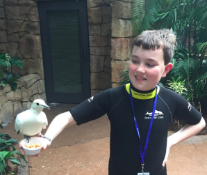 Meeting a new feathered friend at the all inclusive Discovery Cove Orlando