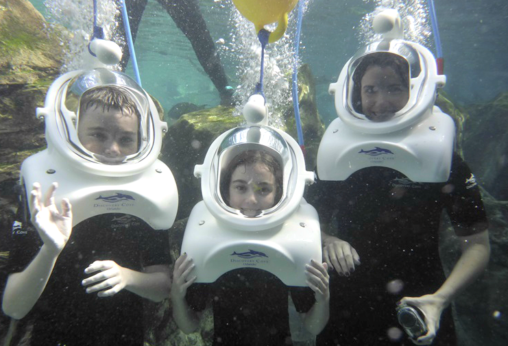 "A family ""down under,"" this is the one activity not included in the otherwise all inclusive Discovery Cove Orlando."
