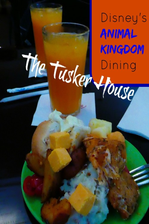 Animal Kingdom The Tusker House Review