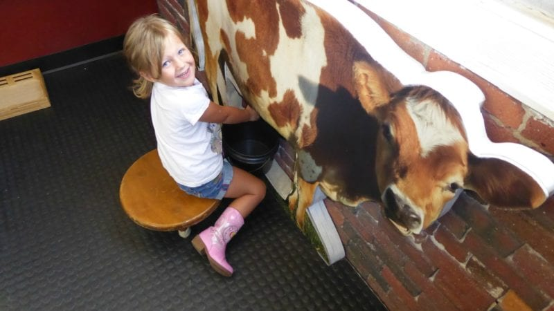 travel, museum, milking cow