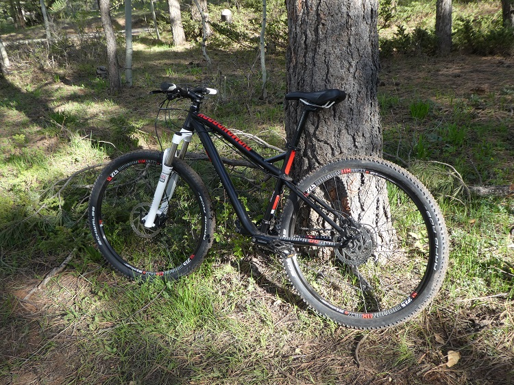 Things You Need for an Awesome Family Mountain Biking Adventure properly sized bike