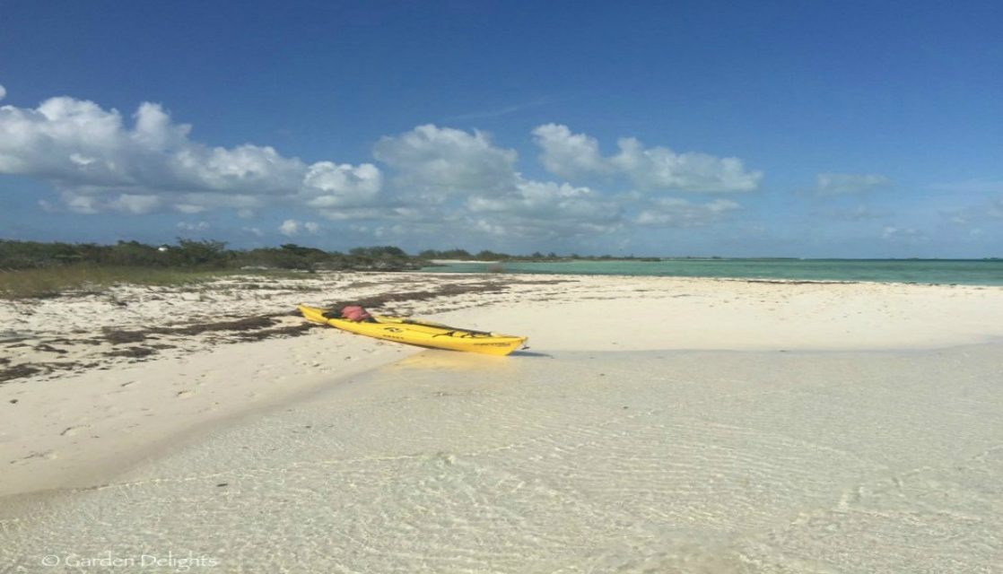 4 Sensational, Secluded Snorkeling Beaches in Turks and Caicos.