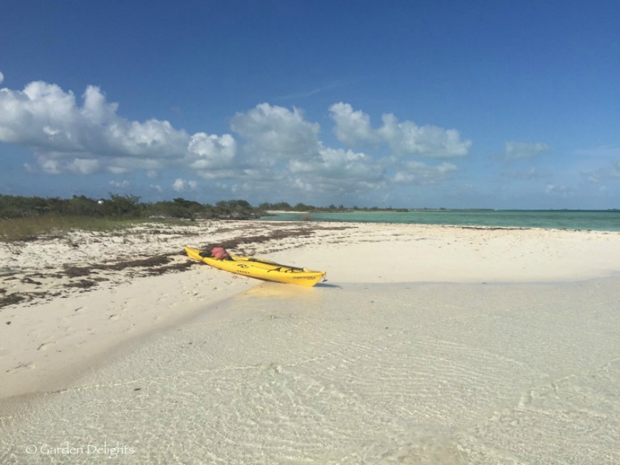 Little Water Cay requires a bit of paddling to reach its secluded shores, but it's worth the effort.