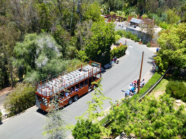 San Diego Zoo Guided Bus Tour