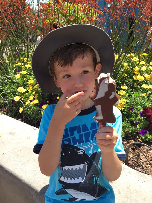 Sea World San Diego Shamu Ice Cream Treat