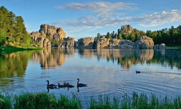 Calling All Families to Discover Custer State Park