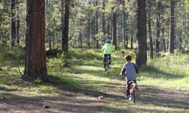 6 Things You'll Need for an Awesome Family Mountain Biking Adventure