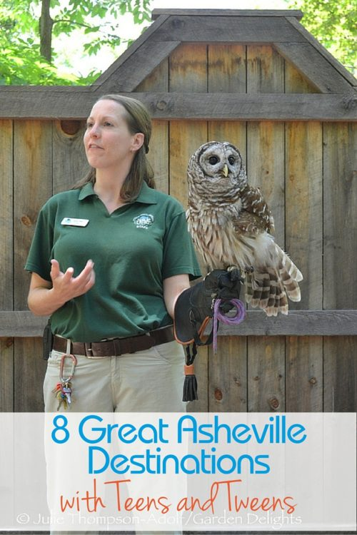 WNC Nature Center provides visitors with an education about native wildlife in the Carolinas.