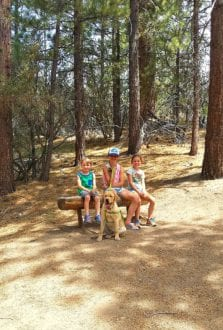 kids hike big bear