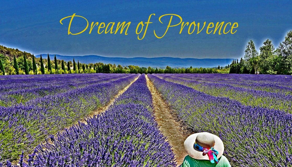 My Dream of Provence – In Search of Lavender Fields