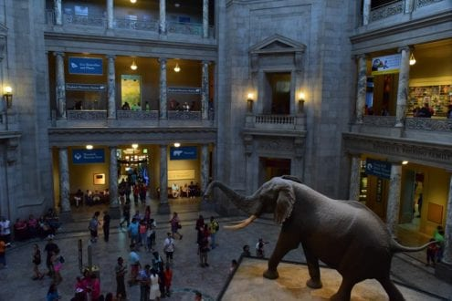 DC contributes many attractions to our list of free in the MidAtlantic Sites