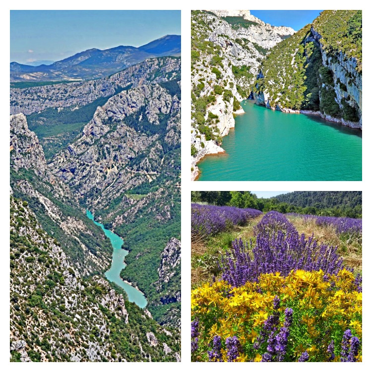Lavender fields in Provence France - how to plan a trip. Gorges du Verdon.